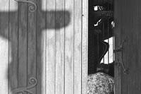 Erika Fajnorová - Hľadanie svetla