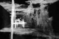 Ružena Fifíková - Rozptyl svetla